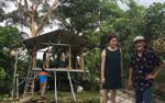Vườn sao Việt tuần qua: Giang 'Còi' khoe vườn sum xuê trái, Diva Mỹ Linh sửa vườn tiền tỷ