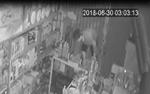 Truy tìm 5 thanh niên đột nhập vào tiệm tạp hóa để trộm 100 cây thuốc lá