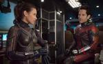 'Ant-Man and the Wasp' - Nhân vật phụ đông như kiến, không thể gây ấn tượng