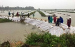 Lo ngại bão Sơn Tinh càn quét - Khẩn trương di dời hàng nghìn hộ dân ven biển Nghệ An, Hà Tĩnh