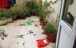 Sống trong chung cư, hàng xóm thường xuyên 'tiện tay' vứt rác xuống, cô gái hoảng hồn vì ban công thành 'bãi chiến trường'