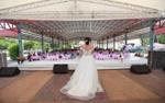 Chú rể chạy trốn đám cưới, cô dâu thẫn thờ thông báo trước quan khách