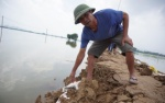 Chùm ảnh nước đê tả Bùi rút mạnh, hàng vạn người dân ở Hà Nội tạm thời qua cơn nguy cấp