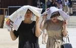 Nắng nóng kỷ lục trong hơn 100 năm qua ở Hàn Quốc, 42 người chết