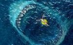 'Cá mập siêu bạo chúa': Cuộc săn đuổi quái vật nguy hiểm đến từ đáy đại dương khiến khán giả nghẹt thở