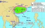 Áp thấp nhiệt đới có khả năng mạnh lên thành bão, Bắc Bộ đón mưa lớn