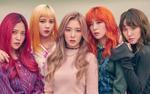 Xôn xao trước thông tin Red Velvet và Super Junior sẽ đến Hà Nội vào thời gian tới?