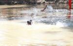 Thương tâm hai anh em họ trượt chân xuống ao đuối nước tử vong