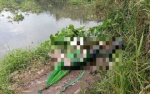 Đi câu cá, tá hỏa phát hiện thi thể người đàn ông đang phân hủy