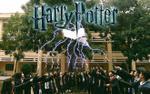 Teen Sóc Trăng 'đại náo' biến lớp học thành Học viện Phù thủy Hogwarts trong bộ ảnh kỷ yếu chất phát ngất