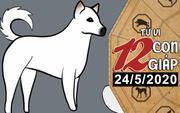 Tử vi chủ nhật ngày 24/5/2020 của 12 con giáp: Sửu được cầm tay chỉ việc, Tuất dễ vướng họa mất tiền