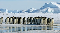 10 thiên đường thám hiểm hoang dã hấp dẫn nhất hành tinh do đôc giả Guardian bình chọn