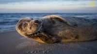 15 bức ảnh nhìn là muốn đi của Nhiếp ảnh gia du lịch năm 2017
