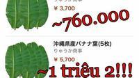Chuyện lạ có thật: Lá chuối tươi đăng bán trên Amazon có giá gần 500.000 đồng/lá