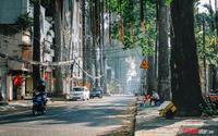Sáng 30 Tết, thành phố này trả lại riêng cho người Sài Gòn đấy!