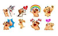 Đây là bốn chú chó 'quốc dân' và 'quyền lực' nhất trên Facebook
