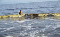 Đà Nẵng: Biển xuất hiện vệt nước màu lạ khiến người dân xôn xao