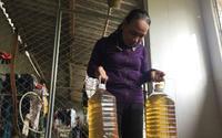 Kỳ lạ nước giếng múc lên có mùi dầu: Phân tích mẫu nước, truy xuất nguồn gốc gây ô nhiễm