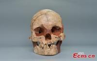 Phát hiện hộp sọ người hoàn chỉnh 16.000 năm tuổi