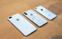 Apple bị cáo buộc cố tình tìm thêm lỗi để moi tiền người dùng thay pin iPhone