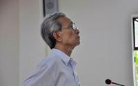 Vụ cụ ông 77 tuổi dâm ô trẻ em hưởng 18 tháng tù treo: Đề nghị hủy bản án phúc thẩm để xét xử lại
