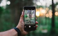 Chụp ảnh bằng smartphone mãi không thấy đẹp là do bạn chưa biết đến những mẹo này thôi