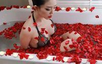 Tuyển tập phòng tắm xa hoa khiến fan vừa ngắm vừa thèm mà Sao Việt  từng khoe