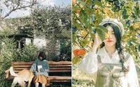 5 khu vườn thơ mộng như cổ tích, chỉ cần đứng vào là có ngay ảnh đẹp ở Đà Lạt