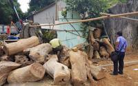 Bên trong sào huyệt của 'trùm ma túy' ở Lóng Luông: Gỗ quý chất chồng cao hàng mét