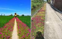 Nhờ một bức ảnh của 10X Tiền Giang mà cư dân mạng phát hiện ra: Đồng quê Việt Nam vô cùng đẹp!