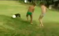 Clip: Chú chó trổ tài dẫn bóng như… Messi
