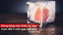 Chuyện lạ thế giới: Đóng băng não thiên tài Nga ở âm 196°C chờ ngày hồi sinh