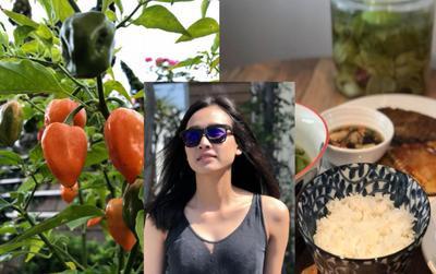 Không chỉ khoe cây trái trong vườn, Dương Mỹ Linh còn khoe thêm điều này