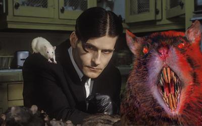 Mừng năm mới Tết Canh Tý 2020 với loạt phim kinh dị về… chuột
