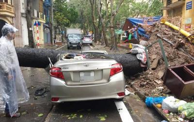 Trận 'cuồng phong' khiến nhiều tuyến đường Hà Nội ngập nặng, cây đổ đè bẹp nát ô tô