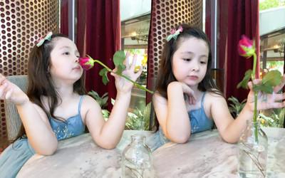 Con gái Elly Trần đốn tim mọi người với loạt ảnh tạo dáng 'nàng thơ' bên hoa hồng