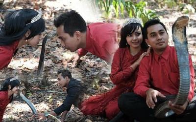 Cặp đôi chụp ảnh cưới cùng 'bé Na', mặc kệ con vật đang 'phùng mang trợn má'
