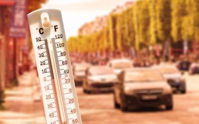 Nắng nóng kỷ lục có thể đã lấy mạng của gần 500 người ở Canada