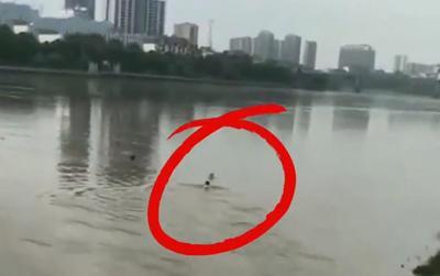 Nhảy xuống sông cứu trẻ đuối nước, người đàn ông bị đám đông vây lại không cho đi, cái kết gây bất ngờ
