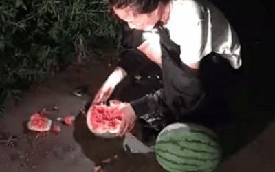Bắt quả tang 'nữ tặc' trộm dưa hấu vào đêm khuya, chủ vườn đưa ra hình phạt khiến kẻ trộm sợ tới già