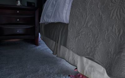 Trông nhà hộ bạn, người đàn ông 'tái mặt' trước phát hiện dưới gầm giường