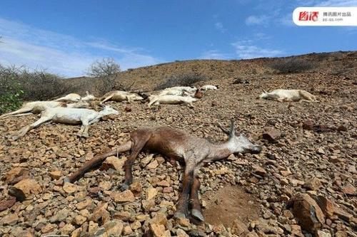 Sức tàn phá kinh khủng của hiện tượng El Nino khiến nhiều người sợ hãi