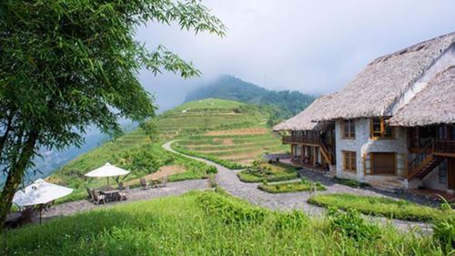 5 resort mở cửa là có thể ngắm lúa
