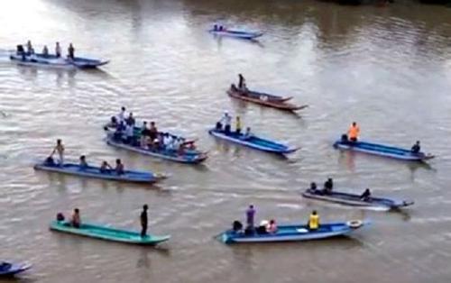 Hàng trăm người cứu hộ cá heo 200 kg trên sông Cà Mau