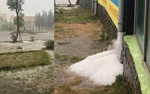 Nhìn ảnh mưa đá kéo dài tại Mộc Châu, cộng đồng mạng hốt hoảng lo sợ 'mận sẽ tăng giá'