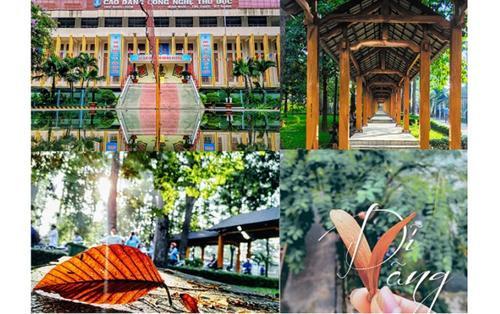 Ngây ngất vẻ đẹp ngôi trường Cao đẳng Công Nghệ Thủ Đức, nơi được ví như 'vườn thượng uyển' giữa lòng Sài Gòn