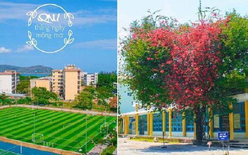 Ngây ngất trước khuôn viên Đại học Quy Nhơn quanh năm được biển xanh 'ôm ấp', sinh viên muốn 'lạc trôi' vào mãi không thôi