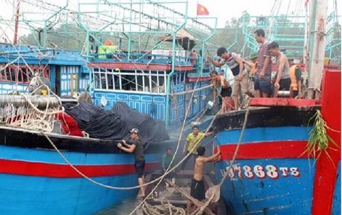 Nhiều tàu thuyền ở Nghệ An vẫn chưa liên lạc được sau khi bão số 2 đổ bộ