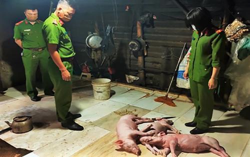 Hà Tĩnh: Chủ cơ sở mua lợn chết về quay để bán cho khách hàng