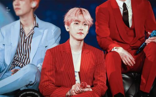 Baekhyun (EXO) đứng đầu cách biệt bình chọn thần tượng thiên tài dựa trên bài kiểm tra tính cách MBTI nổi tiếng